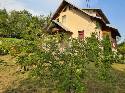 Casa de vacanta/locuinta, Cosmina de Jos - cu vedere la muntele si padure
